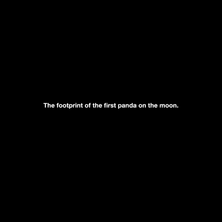 "Michael Schirner, ""The footprint of the first panda on the moon"""