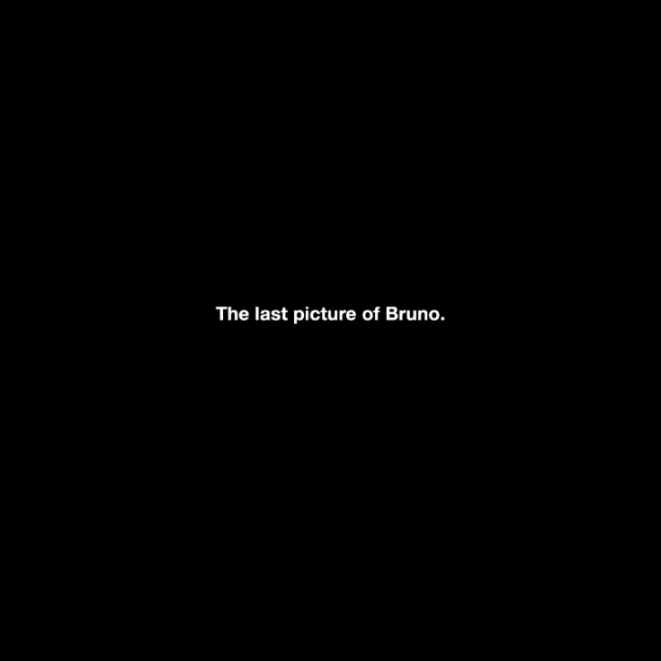 "Michael Schirner, ""The last picture of Bruno"","