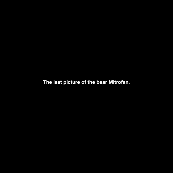 "Michael Schirner, ""The last picture of the bear Mitrofan"""
